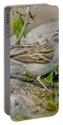 Chipping Sparrow Portable Battery Charger