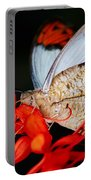 Colorful Portrait Of A Butterfly  Portable Battery Charger