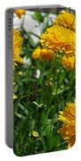 Coreopsis Named Early Sunrise Portable Battery Charger