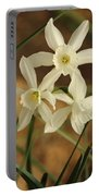 3 Daffodils Portable Battery Charger