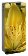 Double Asiatic Lily Named Fata Morgana Portable Battery Charger