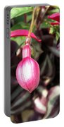 Fuchsia Named Roesse Blacky Portable Battery Charger