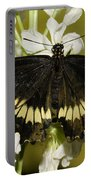 Gold Rim Swallowtail Butterfly Portable Battery Charger