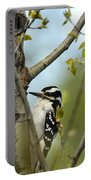 Hairy Woodpecker Portable Battery Charger by Linda Freshwaters Arndt