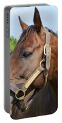 Horse On A Farm  Portable Battery Charger