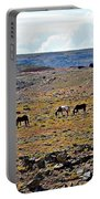 3 Horses At 4 Corners Portable Battery Charger