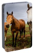 3 Horses Portable Battery Charger