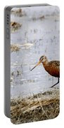 Hudsonian Godwit Portable Battery Charger