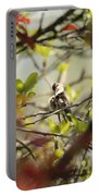 Hummingbird In Spring Portable Battery Charger