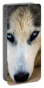 Husky  Portable Battery Charger by Stelios Kleanthous