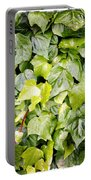 Ivy Portable Battery Charger by Les Cunliffe