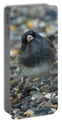 Junco Portable Battery Charger