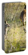 Kangaroo Portable Battery Charger