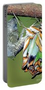Malachite Butterfly Metamorphosis Portable Battery Charger