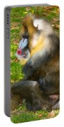 Mandrill Portable Battery Charger