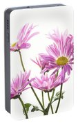 Mums Flowers Against White Background Portable Battery Charger