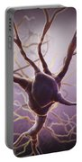 Neuron Portable Battery Charger