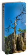 Old And Ancient Dry Tree On Top Of Mountain Portable Battery Charger