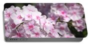 Phlox Paniculata Named Bright Eyes Portable Battery Charger