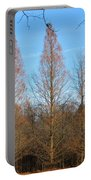 3 Pines Portable Battery Charger