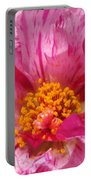 Portulaca Named Sundial Peppermint Portable Battery Charger