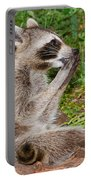 Raccoons Portable Battery Charger