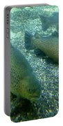 Rainbow Trout Portable Battery Charger by Les Cunliffe