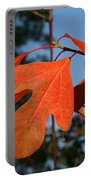 Red Autumn Portable Battery Charger
