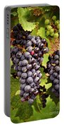 Red Grapes Portable Battery Charger