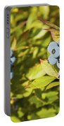 Ripe Maine Low Bush Wild Blueberries Portable Battery Charger