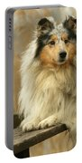Rough Collie Dog Portable Battery Charger
