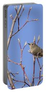 Ruby-crowned Kinglet Portable Battery Charger