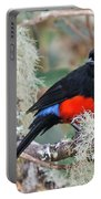 Scarlet-bellied Mountain-tanager Portable Battery Charger