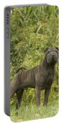 Shar Pei Dog Portable Battery Charger