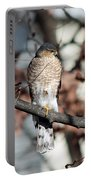 Sharp-shinned Hawk 2 Portable Battery Charger