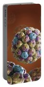 Simian Immunodeficiency Virus Portable Battery Charger