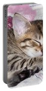 Sleeping Kitten Portable Battery Charger