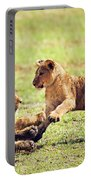 Small Lion Cubs Playing. Tanzania Portable Battery Charger