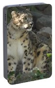 Snow Leopard On The Prowl Portable Battery Charger