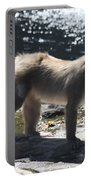 Snow Monkey Portable Battery Charger