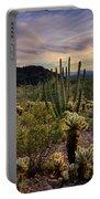 Sonoran Desert Sunset  Portable Battery Charger