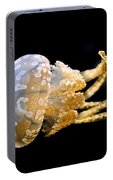 The Spotted Jelly Or Lagoon Jelly Mastigias Papua Portable Battery Charger