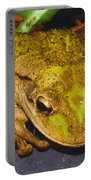 Treefrog Portable Battery Charger