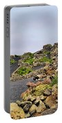 Vineyard On Lanzarote Portable Battery Charger