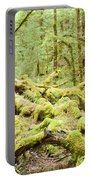 Virgin Rainforest Wilderness Of Fiordland Np Nz Portable Battery Charger