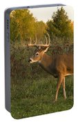 White-tailed Buck In Fall Portable Battery Charger