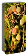 Yellow Plums Portable Battery Charger