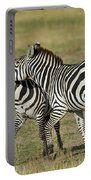 Zebra Males Fighting Portable Battery Charger