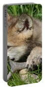 Gray Wolf Pup Portable Battery Charger