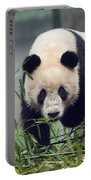 Giant Panda Portable Battery Charger